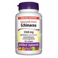 webber naturals Organically Grown Echinacea 3360 mg 180 softgels